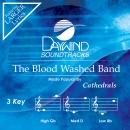 Blood Washed Band image